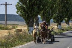 Dobrogea, Romania, Europa, paesaggio rurale Fotografia Stock Libera da Diritti