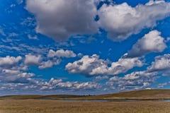 Dobrogean landscape Stock Images