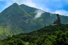 Dobrotliwy Tian dębnik zdjęcie royalty free