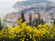 Dubrovnik cityscape Royalty Free Stock Photography