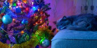 Dobry nowego roku duch Fotografia Stock
