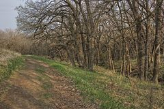 Dobry Ziemski stanu park jest Miastowym stanu parkiem na krawędzi Sioux spadków, Południowy Dakota metra teren Zdjęcie Royalty Free