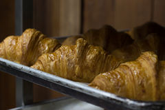 Dobrze Piec Croissant na tacy Fotografia Royalty Free