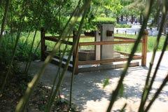 Dobrze wewnątrz bambusowy las Obraz Stock