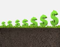 Dobrzy dolarów krótkopędy Dobra narastająca uprawa dolarowy biznes obrazy stock