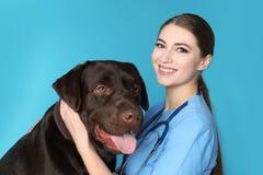 Doc. de vétérinaire avec le chien sur la couleur photographie stock