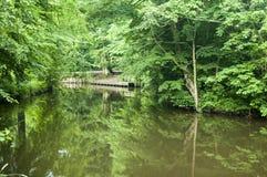 Doca de madeira ao lado do rio marrom Foto de Stock Royalty Free