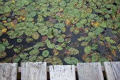 Doca do barco em uma lagoa pequena. fotos de stock royalty free