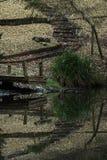 Doca do rio com cores bonitas e vibrantes fotos de stock royalty free