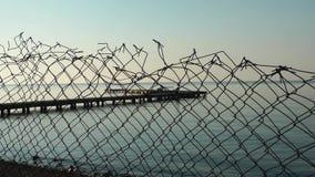 A doca marinha e o mar video estoque