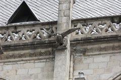 Doccione del condor sul del Voto Nacional della basilica Immagini Stock Libere da Diritti