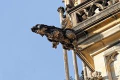 Doccione della st Vitus Cathedral, Praga Fotografie Stock Libere da Diritti
