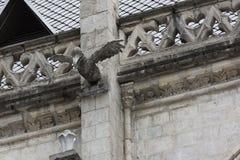 Doccione della testa di legno sul del Voto Nacional della basilica Immagini Stock