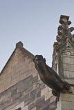 Doccione di Notre Dame Fotografie Stock