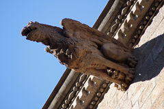 Doccione medievale Fotografia Stock
