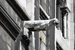 Doccione nella basilica del Sacre Coeur Immagine Stock Libera da Diritti