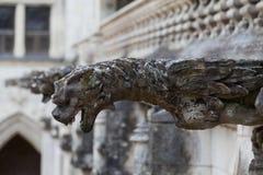 Doccione sulla cattedrale gotica del san Gatien in Tours, Immagine Stock Libera da Diritti