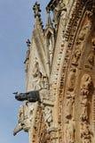 Doccioni della cattedrale di Reims fotografie stock libere da diritti