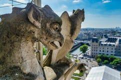 Doccioni di Notre-Dame, città nel fondo fotografia stock