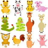 Doce animales chinos del zodiaco Imágenes de archivo libres de regalías