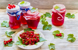 Doce caseiro preservado do corinto vermelho nos frascos de vidro na tabela de madeira branca Bagas frescas e folhas verdes, placa Fotos de Stock Royalty Free
