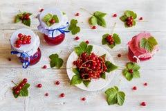 Doce caseiro preservado do corinto vermelho nos frascos de vidro na tabela de madeira branca Bagas frescas e folhas verdes, placa Foto de Stock