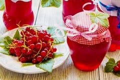 Doce caseiro preservado do corinto vermelho nos frascos de vidro na tabela de madeira branca Bagas frescas e folhas verdes, placa Fotos de Stock
