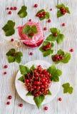 Doce caseiro preservado do corinto vermelho nos frascos de vidro na tabela de madeira branca Bagas frescas e folhas verdes, placa Fotografia de Stock