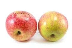 Doce de Apple imagens de stock