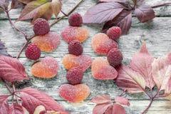 Doce de fruta bonito do fruto na forma de um coração com as framboesas maduras frescas das bagas no fundo das folhas brilhantes c fotos de stock