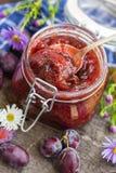 Doce delicioso da ameixa das conservas caseiros Imagem de Stock Royalty Free