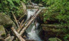 Doce em pouco Stony Creek, Giles County do log, Virgínia, EUA foto de stock royalty free