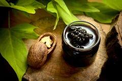 Doce natural e orgânico de Forrest Berries - mirtilo de Aronia -, miliampère Fotos de Stock