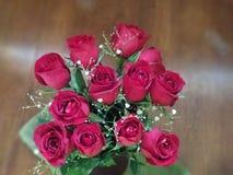 Docena rosas Foto de archivo
