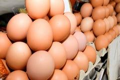 Docenas de huevos en un cartón alineado Fotos de archivo