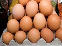 Docenas de huevos en un cartón alineado Fotografía de archivo