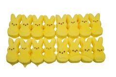 Doces amarelos do coelho Imagens de Stock Royalty Free