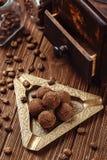 Doces de chocolate da trufa com pó de cacau Foto de Stock Royalty Free