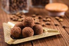 Doces de chocolate da trufa com pó de cacau Imagem de Stock Royalty Free