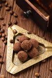 Doces de chocolate da trufa com pó de cacau Imagens de Stock Royalty Free