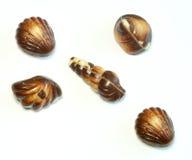 Doces de chocolate em um branco Fotos de Stock Royalty Free