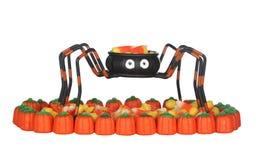 Doces de Halloween na aranha imagens de stock royalty free