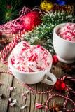 Doces de pastilha de hortelã Cane Ice Cream imagem de stock royalty free