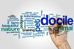 Docile word cloud Stock Photo
