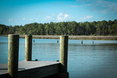 Dock on bay in North Florida over peaceful waters Royalty Free Stock Images