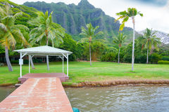 Dock on the beach with palm tree and pali mountains oahu hawaii. In summer Stock Image
