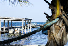 Dock in belize. Scenic image of belize central america Stock Images