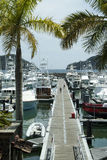 Costa Rica Resort Marina Pier stock photos
