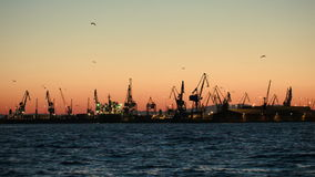 Dock with cranes in the evening stock footage