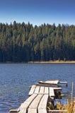 Dock de bateau sur un lac dans la forêt Photo stock